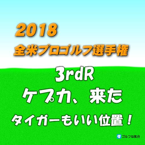2018年 全米プロゴルフ選手権3rdR